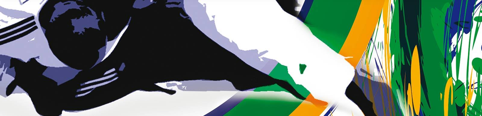 Ligue ile de france judo - Institut national du judo porte de chatillon ...